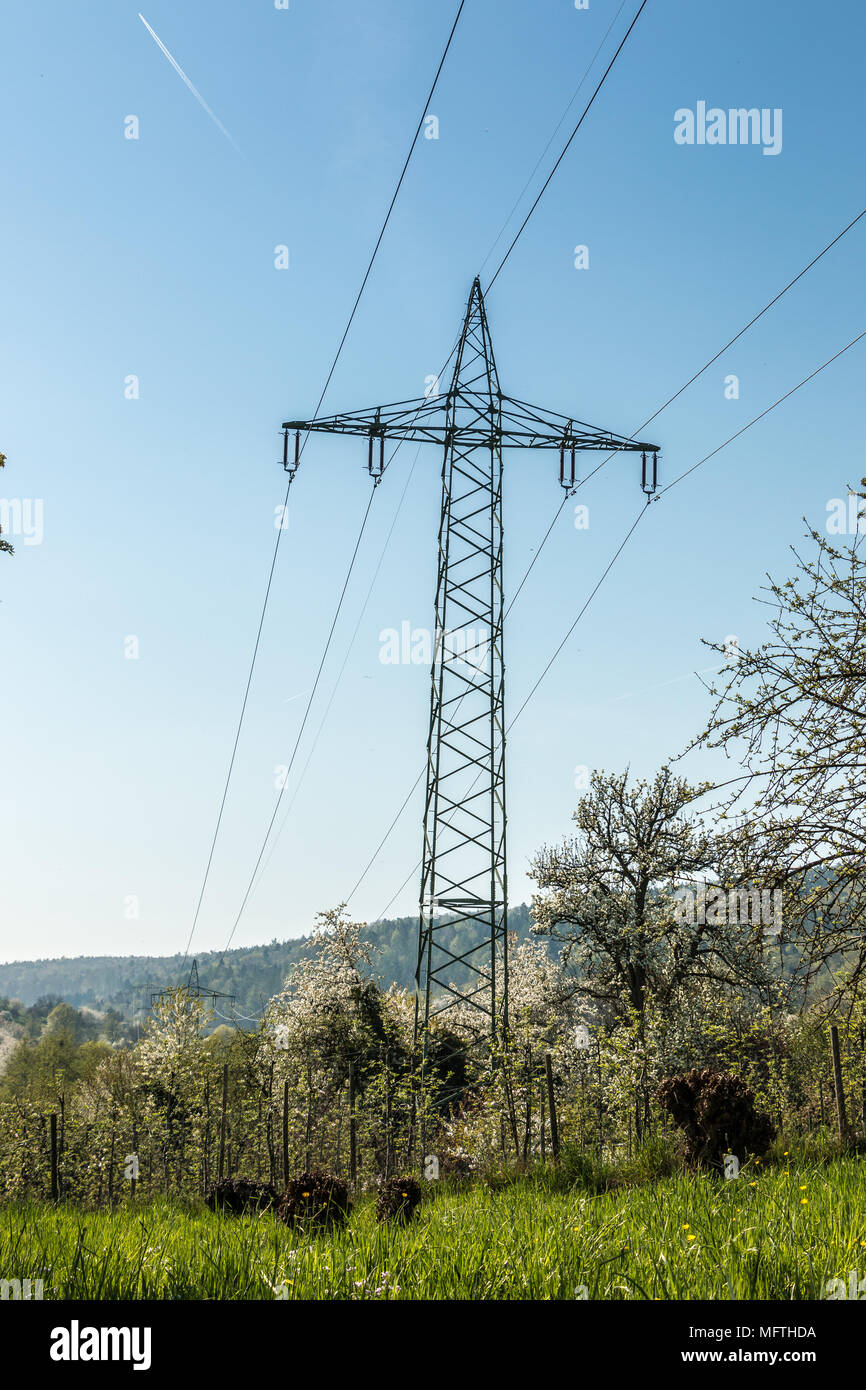 Power pylon on the green field - Stock Image