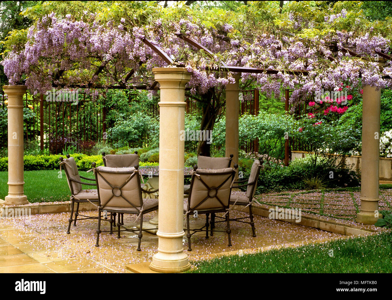 Coglizer Garden With Table And Chairs On Patio Covered With Wisteria  Sinensis