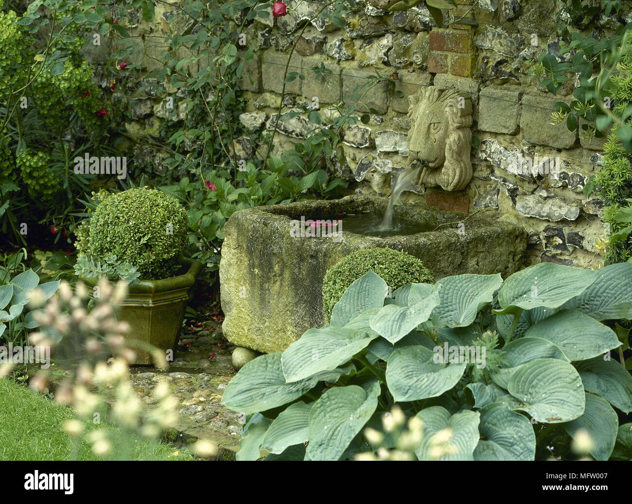Water Feature Rustic Lion Head Fountain Hosta Features Hostas