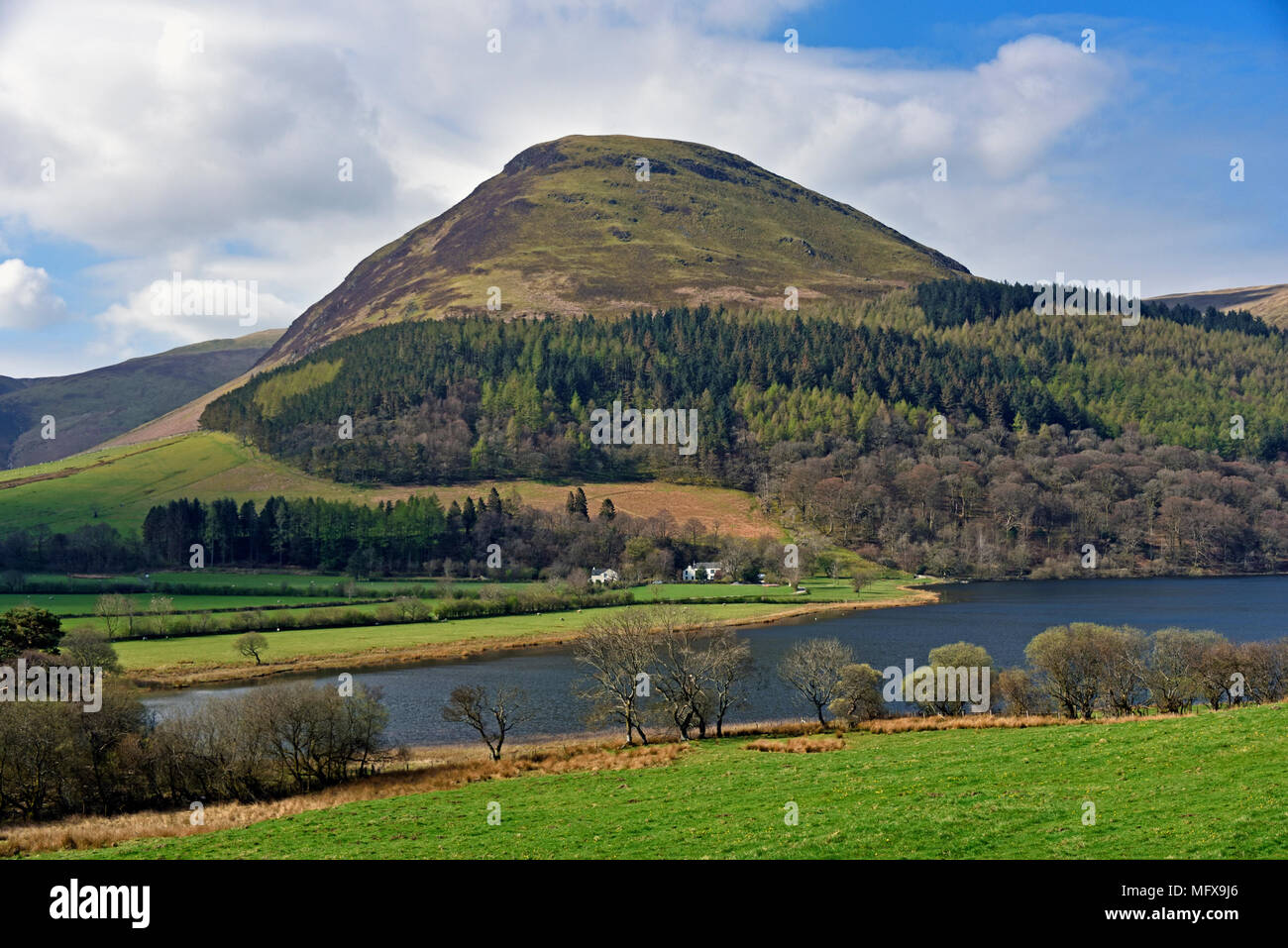 Loweswater, Holme Wood and Burnbank Fell. Lake District National Park, Cumbria, England, United Kingdom, Europe. - Stock Image