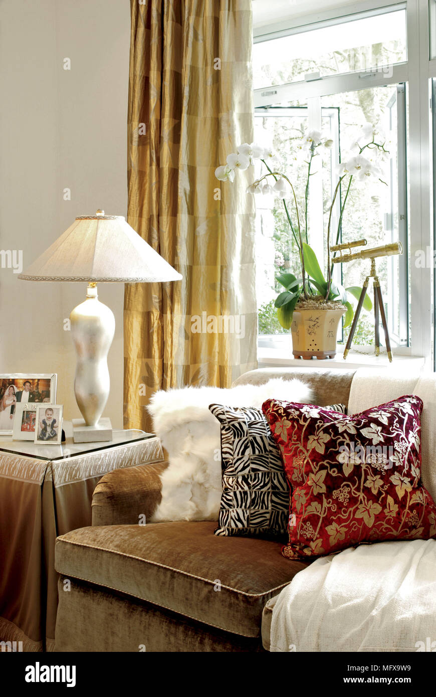 Cushions On Brown Sofa In Front Of Window With Gold