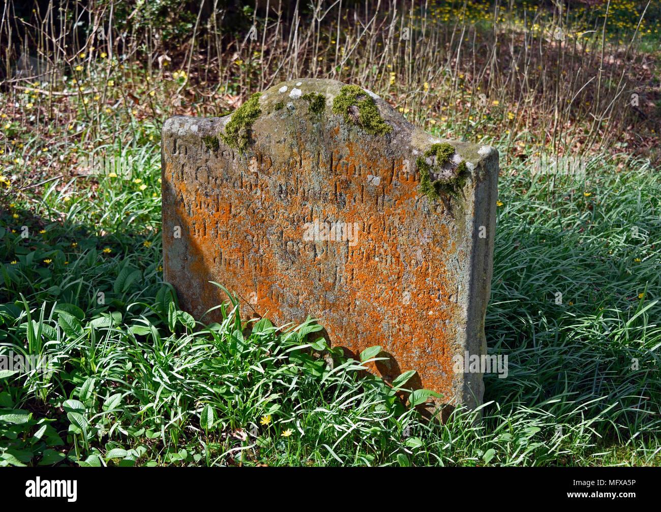 Gravestone with orange coloured lichen. Church of Saint Mary. Ennerdale Bridge, Lake District National Park, Cumbria, England, United Kingdom, Europe. - Stock Image