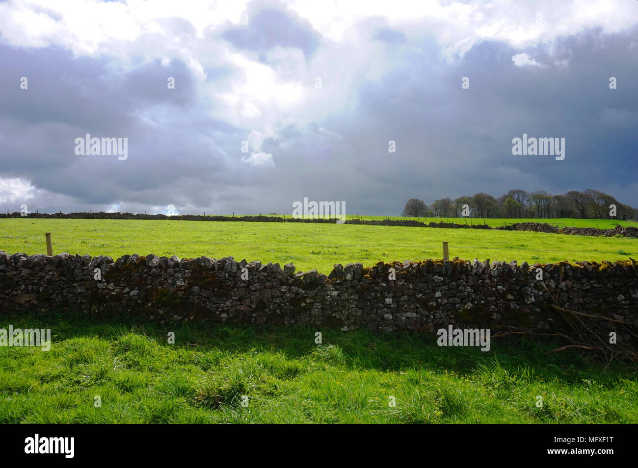 Country Scene in the Derbyshire Dales with stone wall in foreground and cloud heavy sky in the background - Stock Image