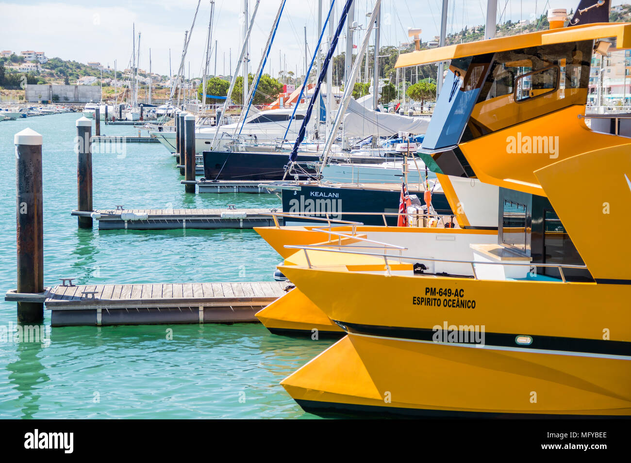Yellow dolphin watching coastline cruise catamaran tied in the bay of Marina de Albufeira, Albufeira Algarve, Portugal. - Stock Image