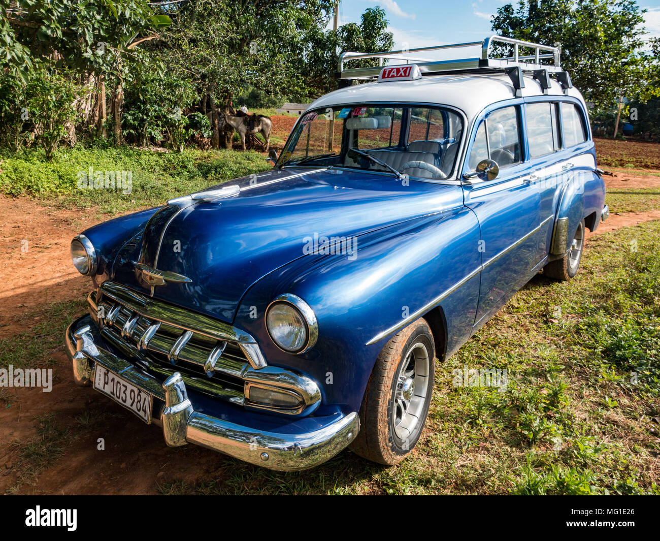 Vinalis, Cuba, Nov 23, 2017 - Classic American blue 1950's Chevrolet station wagon - Stock Image