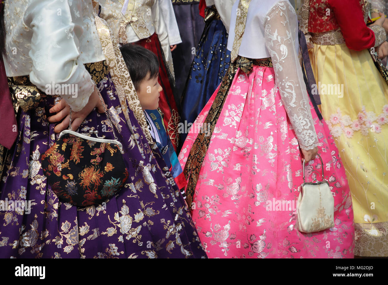 A little boy hides among the full skirts in a group of Korean women wearing the traditional hanbok fashion, in brilliant colors. Viewed shoulders down. - Stock Image