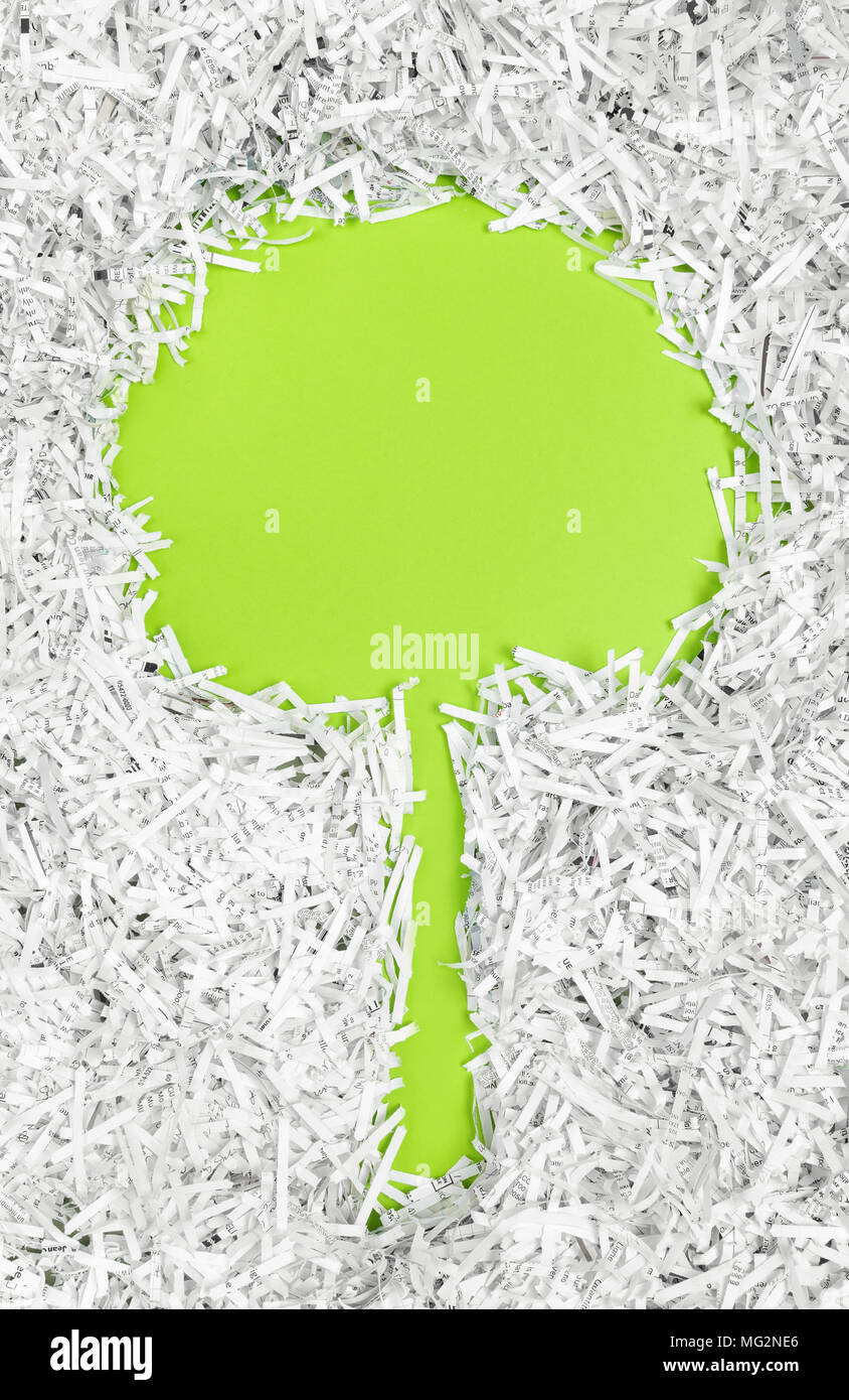 Frame in the shape of a tree made of shredded paper. Recycling and environment protection concept. - Stock Image