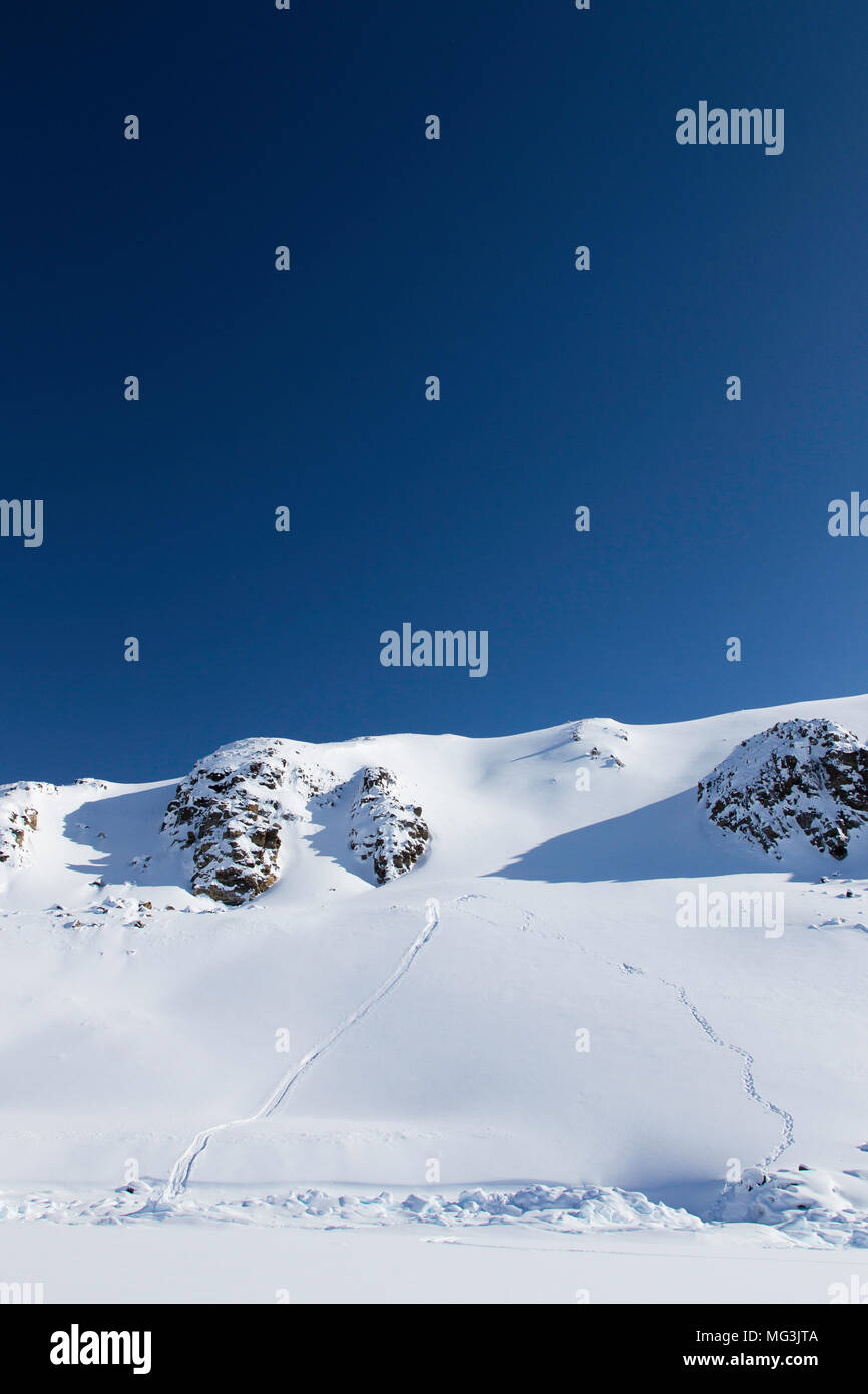 Polar bear tracks and slide marks in the snow on the hillside.  Baffin Island, Nunavut, Canada, arctic Stock Photo