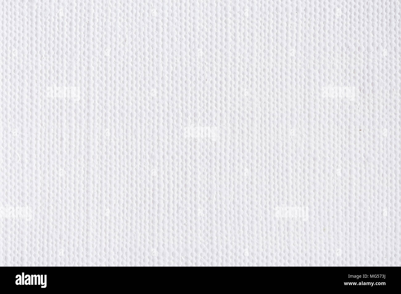 White Canvas Background Texture High Resolution Photo