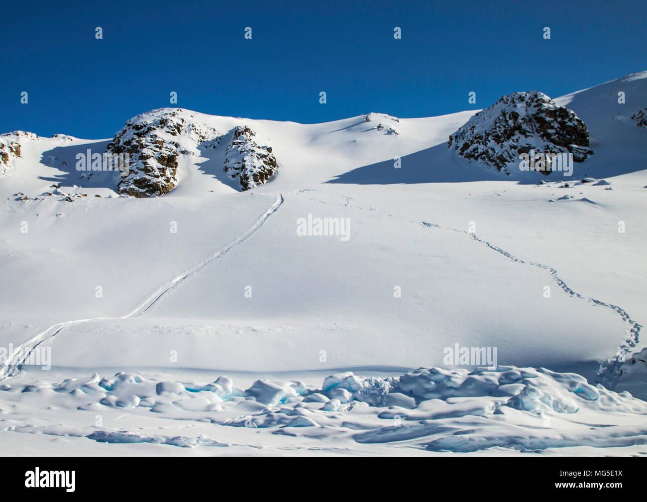 Polar bear tracks and slide marks in the snow on the hillside.  Baffin Island, Nunavut, Canada, arctic - Stock Image