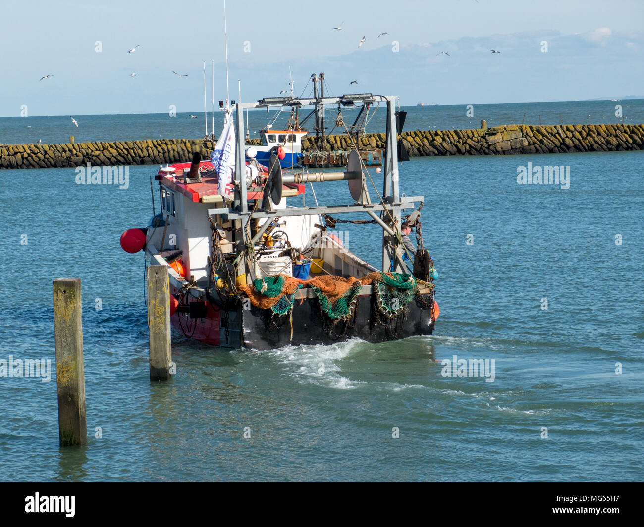 Trawler just back from the catch of the day - Stock Image