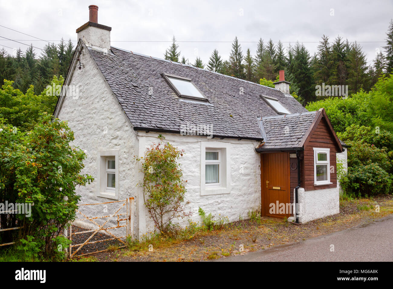 A typical traditional country slate roof cottage with white walls in rural Scotland UK - Stock Image