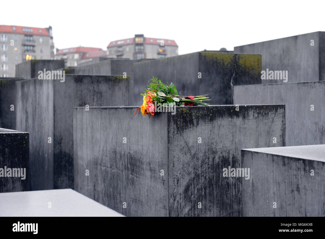 Bright bouquet of flowers on gray concrete blocks contrasts with oppressive damp grey stone of Holocaust memorial Berlin Germany - Stock Image