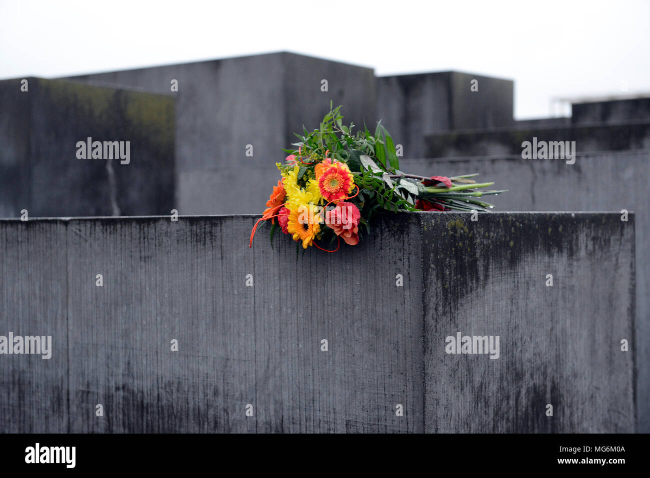 Bright bouquet of flowers contrasts with oppressive damp grey stone of Holocaust memorial Berlin Germany - Stock Image