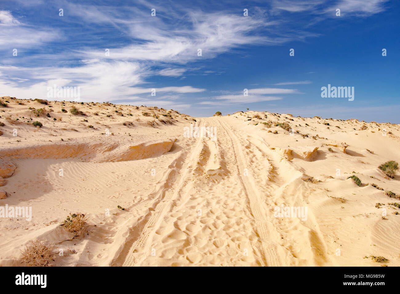 Track in sand dune. - Stock Image