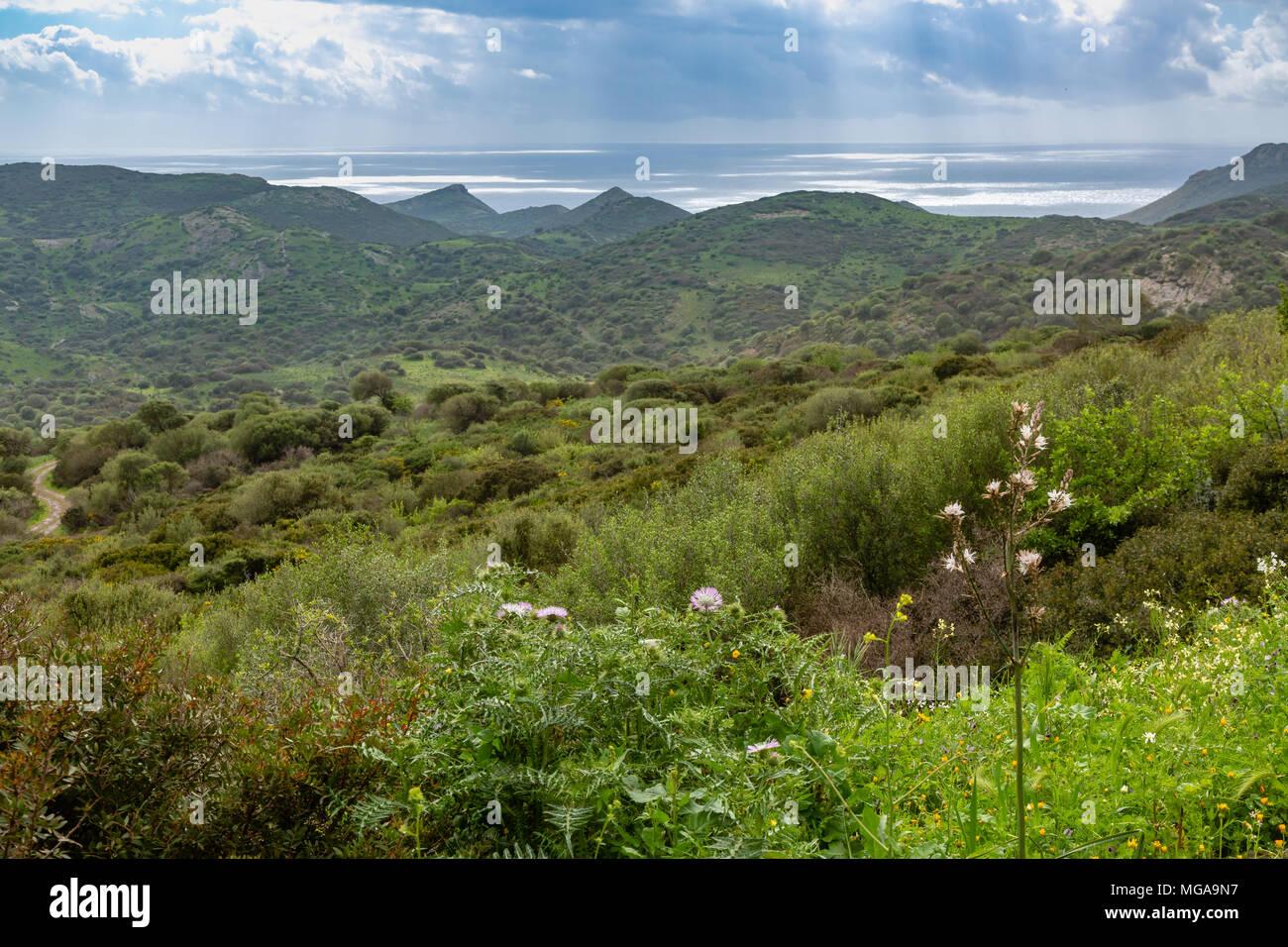 The spring atmosphere of the northwest coast of Sardinia, Italy - Stock Image