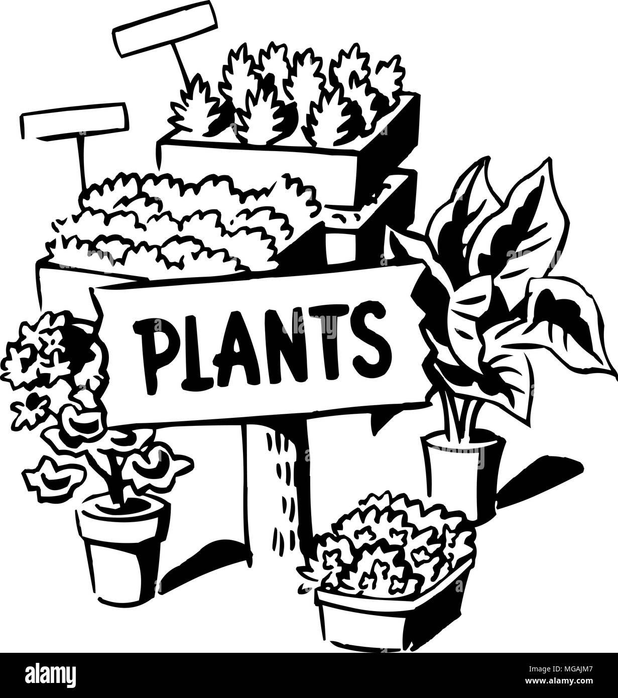 Plants - Retro Clipart Illustration Stock Vector