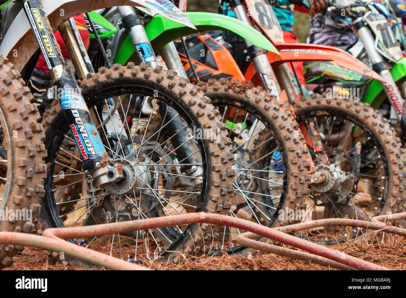 Closeup of dirt bike tires lined up at start of motocross race at the Scrubndirt Track on December 3, 2016 in Monroe, GA. - Stock Image