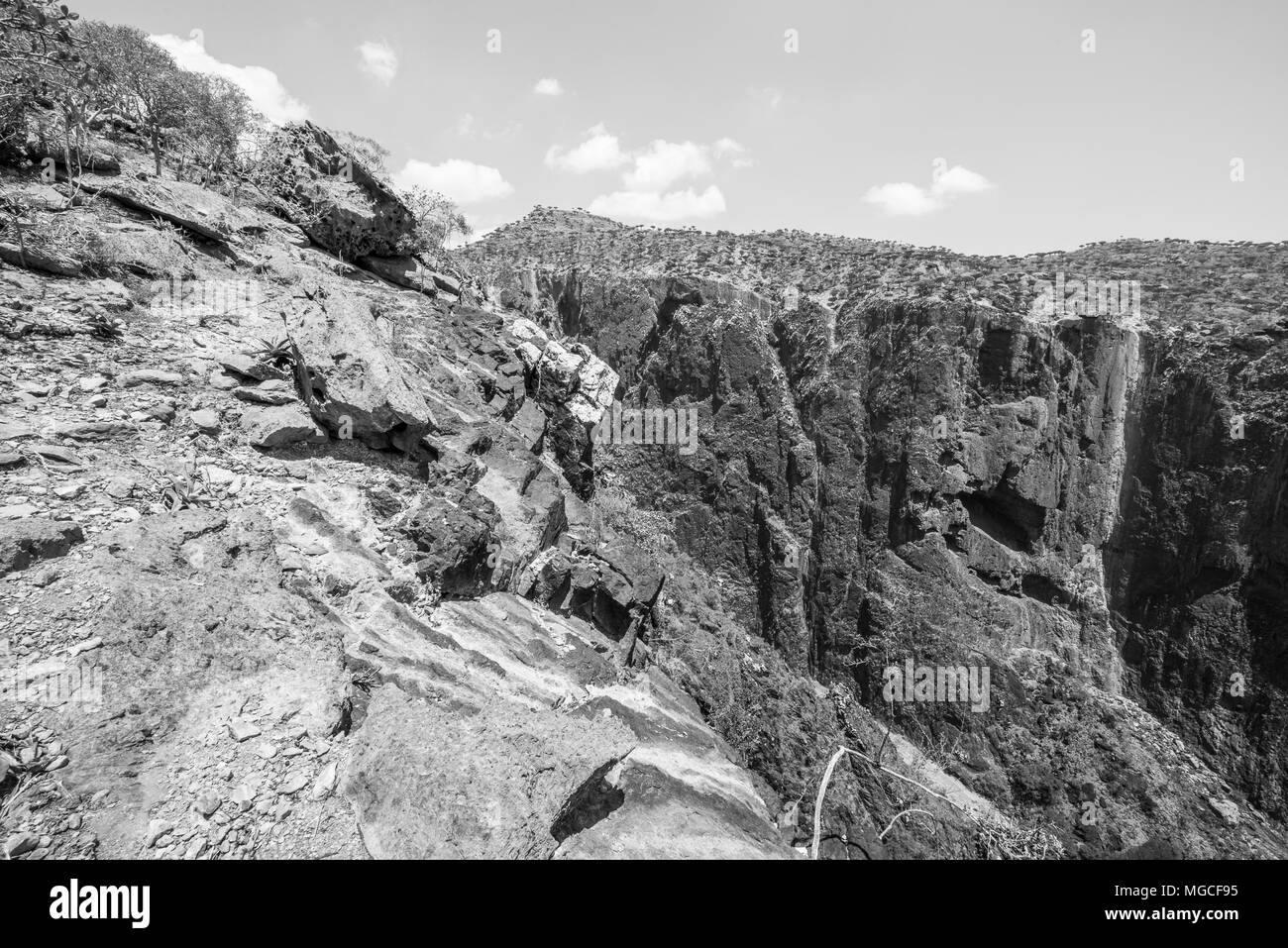 Rocks and nature of the Socotra Archipelago, UNESCO World Heritage - Stock Image