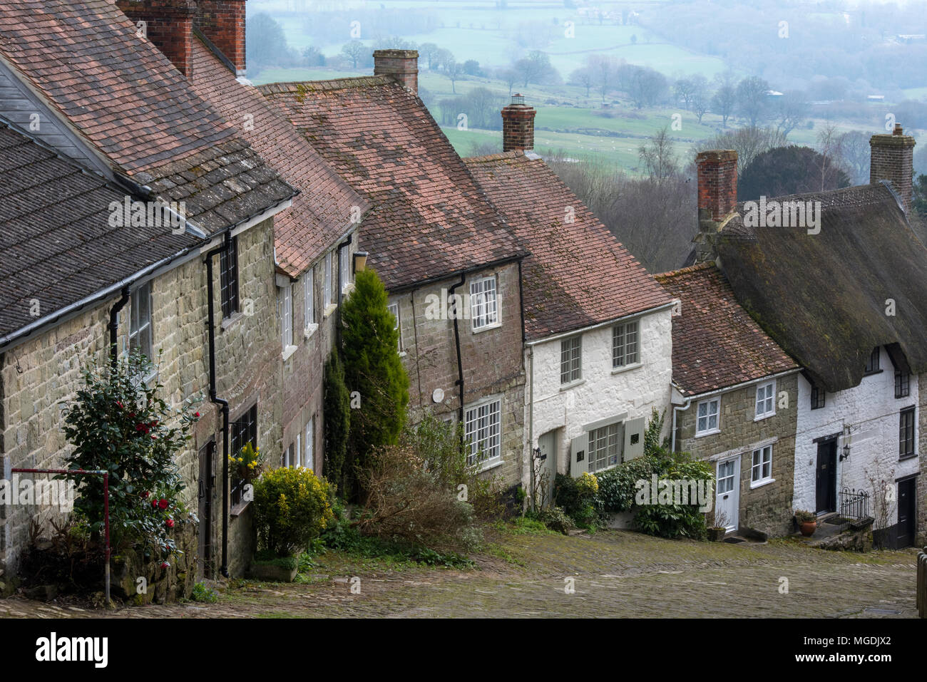 The beautiful dorset countryside and typically English thatch cottages at gold hill in Shaftesbury. Scenery and English countryside houses and cobbled Stock Photo