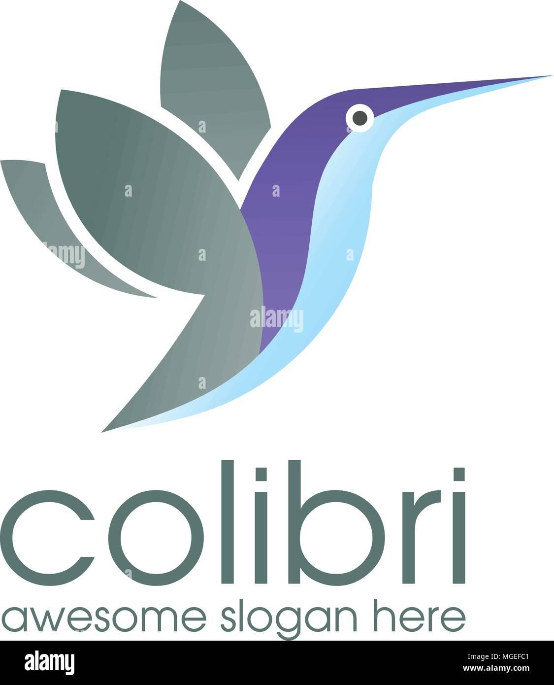 colibri logo bird symbol design template hummingbird vector bird