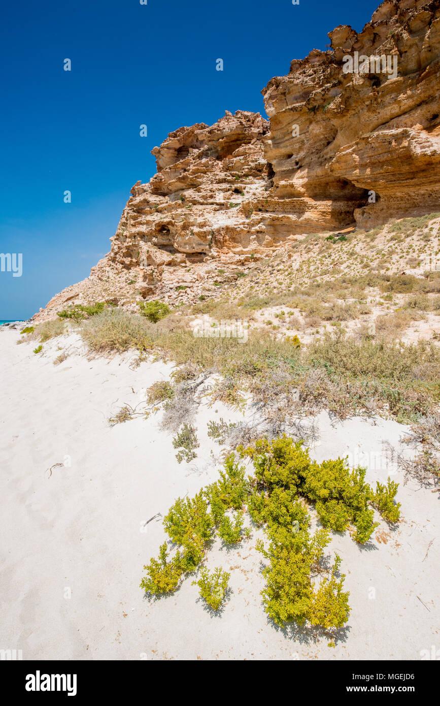 Rocks in Socotra, Yemen - Stock Image