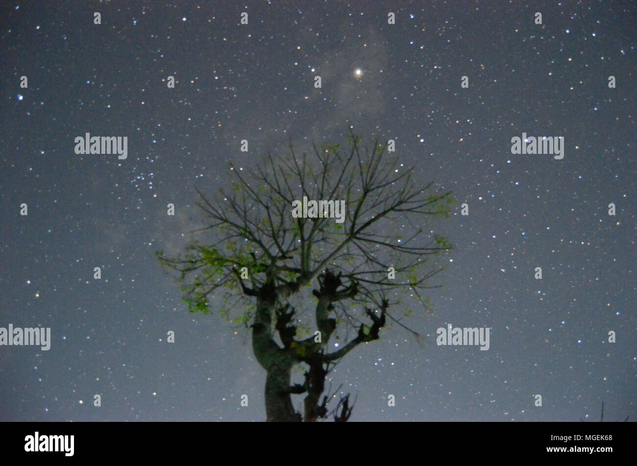 beautiful night astrophotography with beautiful and interesting stars - Stock Image