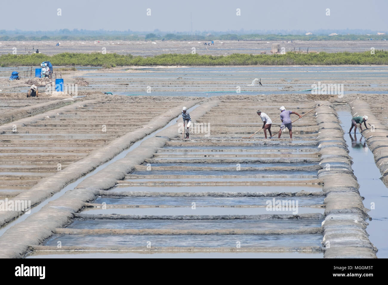 Villuppuram, India - March 18, 2018: Workers on the salt flats in the north of Tamil Nadu. The salt is separated in the pits and dried in small heaps - Stock Image