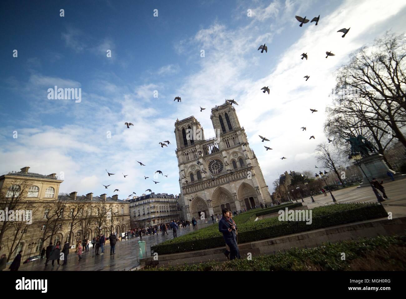Pigeons flying past the Notre Dame Cathedral in Paris (Notre-Dame de Paris) - Stock Image