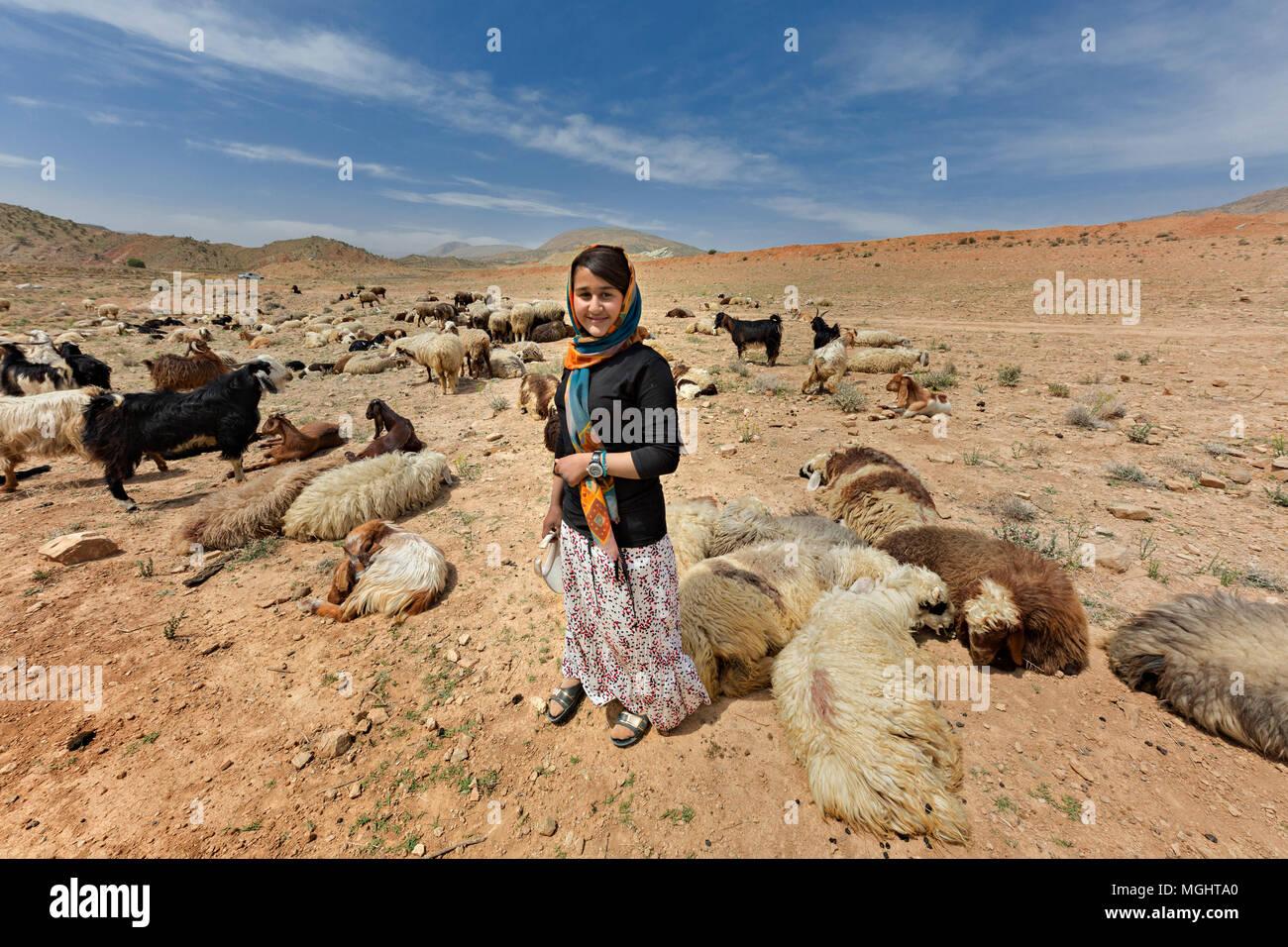 Iranian nomadic shepherdess belonging to the tribe known as Qashqai, herds goats and sheep, in Firuzabad, Iran. - Stock Image