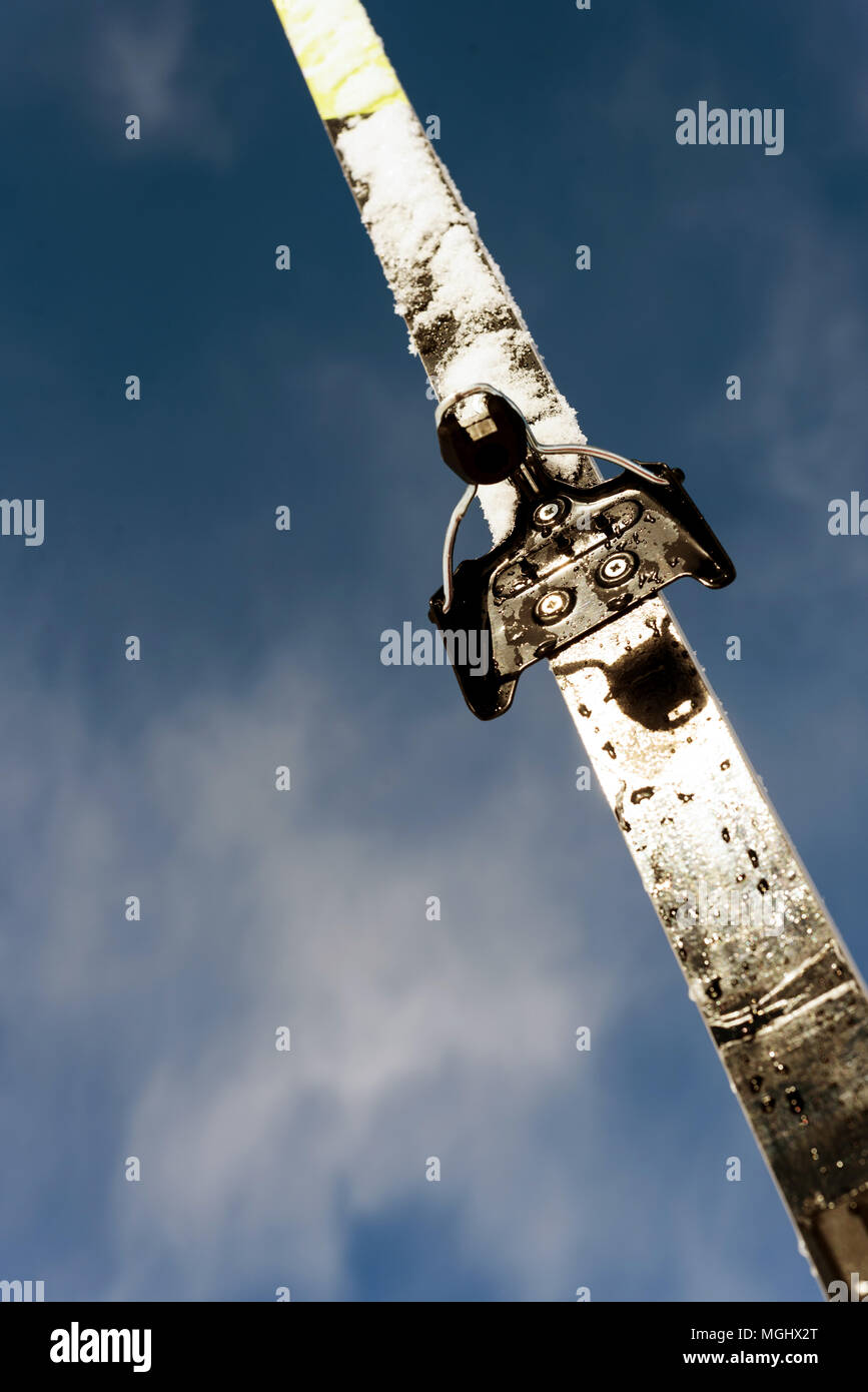 Single new cross-country ski set against a blue winter sky with defocused clouds in the background with a copy space area for wintery themed sports an Stock Photo