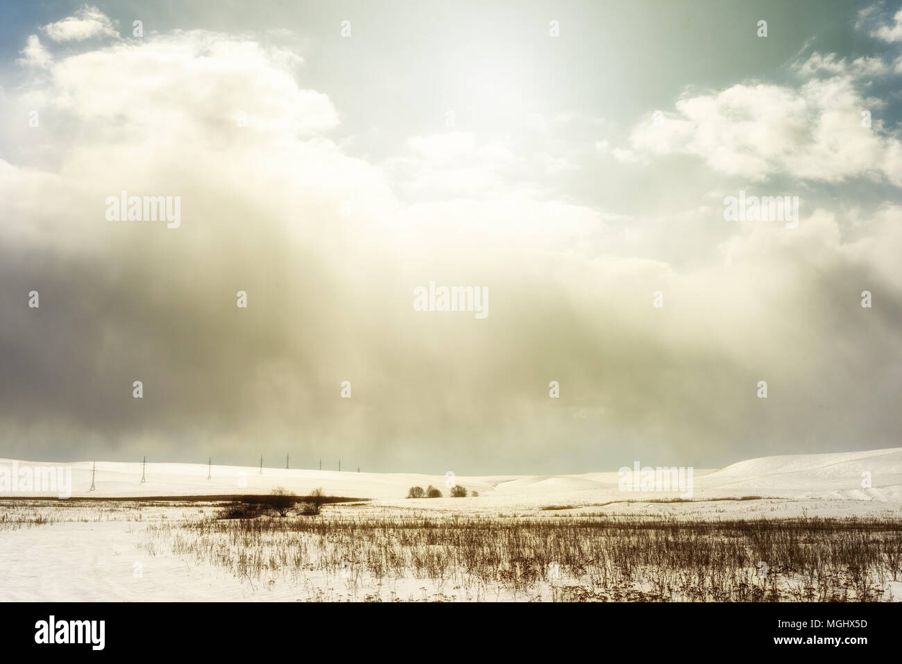 Winter snowscape of wild fields with weeds and large snow clouds and areas of blue sky with nobody in the wintry themed scene and landscape. Row of py Stock Photo