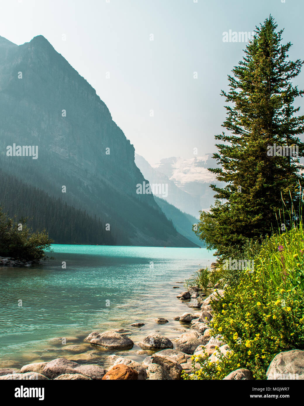 Beautiful Lake Louise in Banff National Park, Alberta Canada - Stock Image
