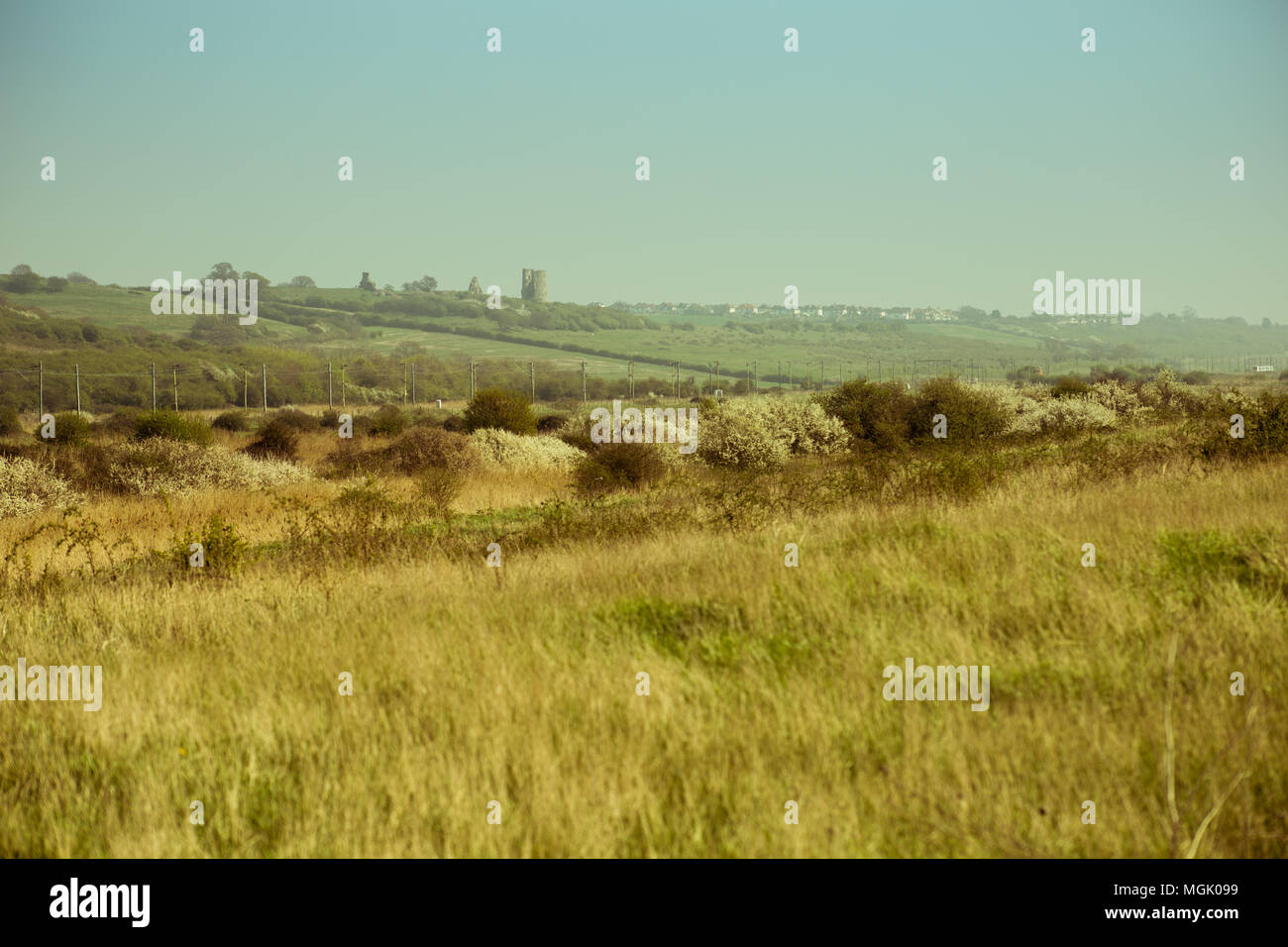 sunny English landscape with Hadleigh Castle on the horizon - Stock Image