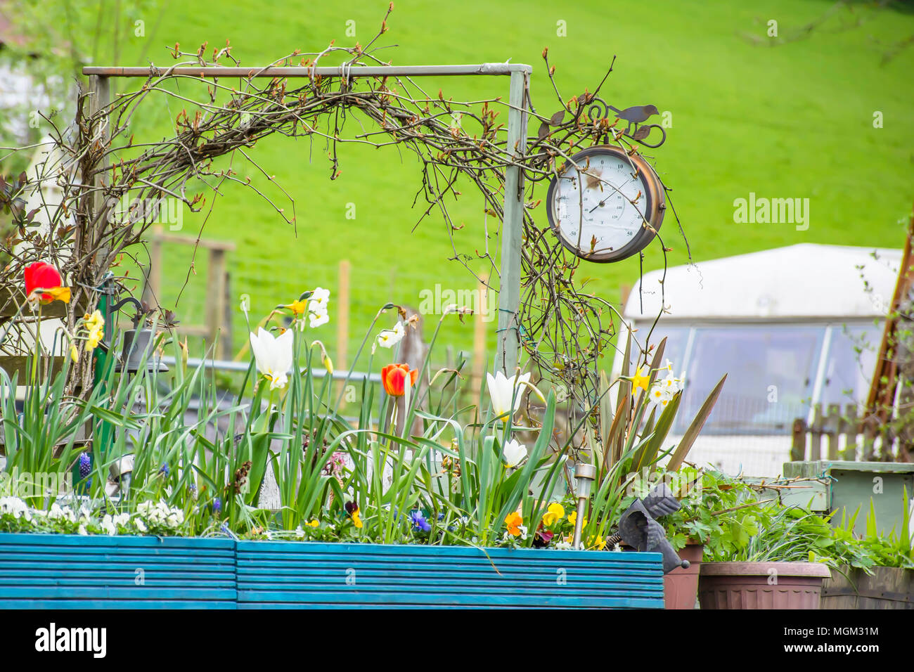 Wales Countryside In Springtulip Flowers Clock Caravan Green
