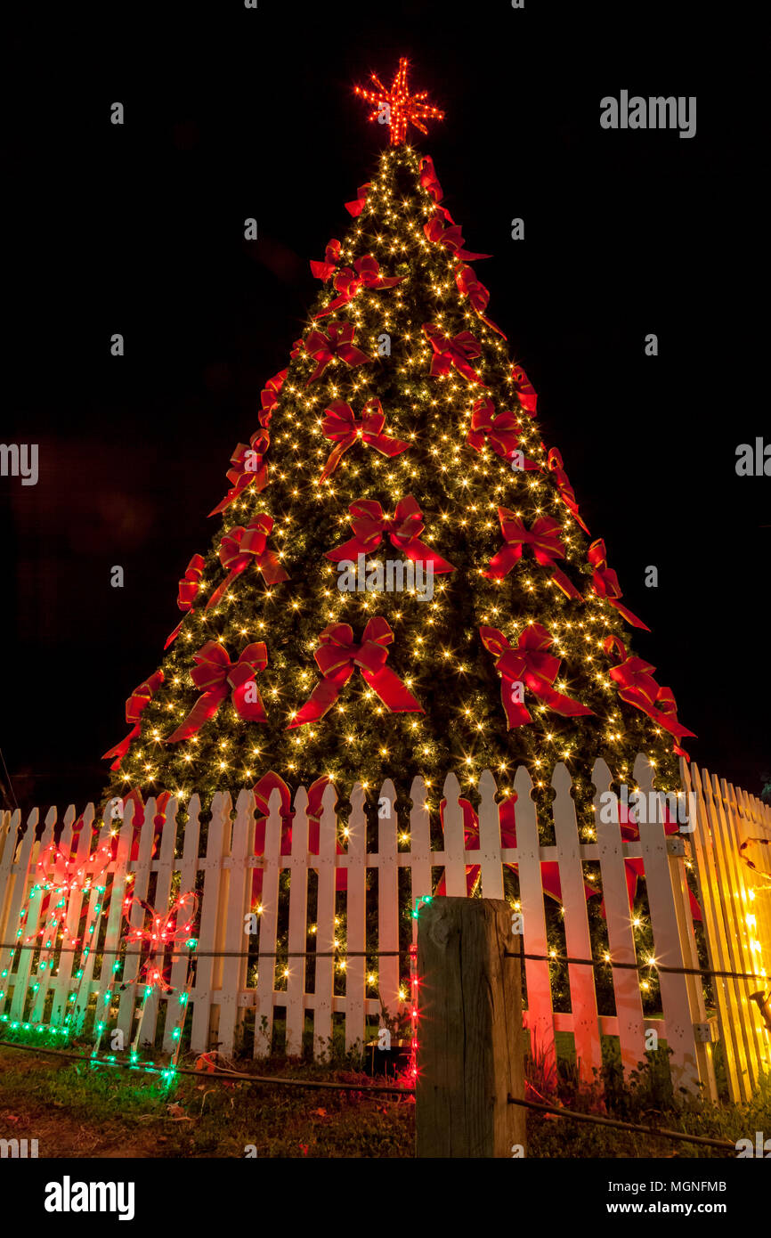 Christmas Tree At Night In The Woodlands Texas Stock Photo