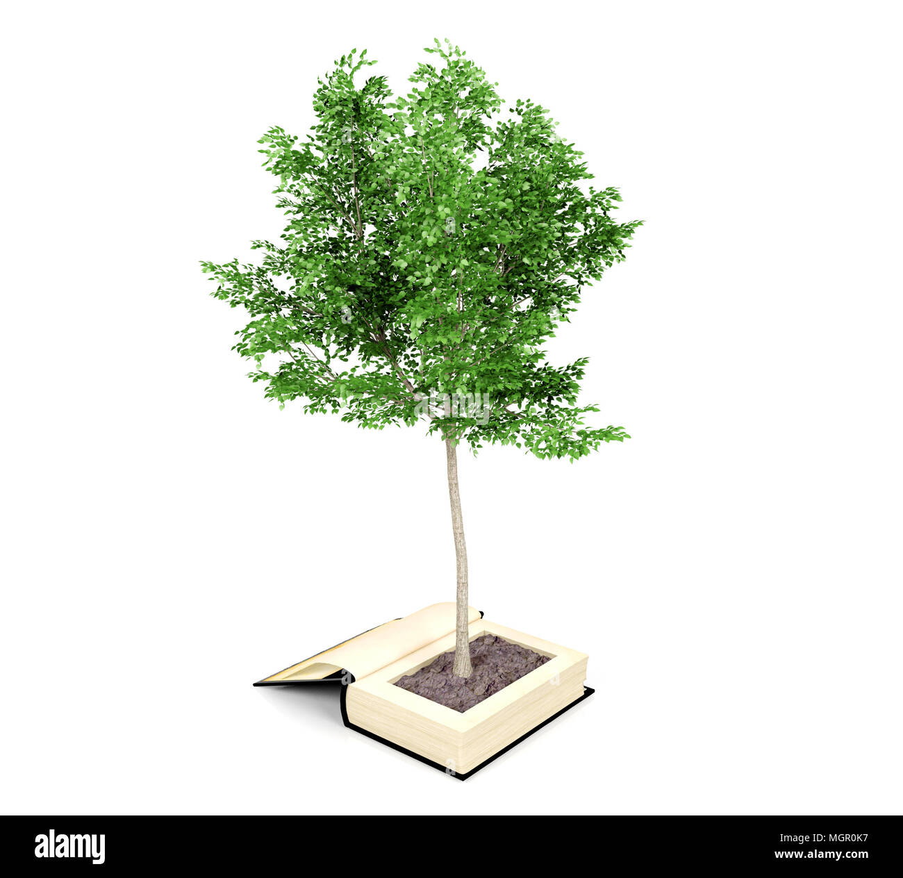 Tree growing from the old book. Reading develops imagination. Knowledge growth from education concept, 3D rendering - Stock Image