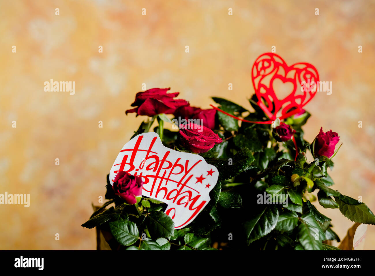 Red Roses Flowers With Red Heart On Wooden Backgroundrthday Card