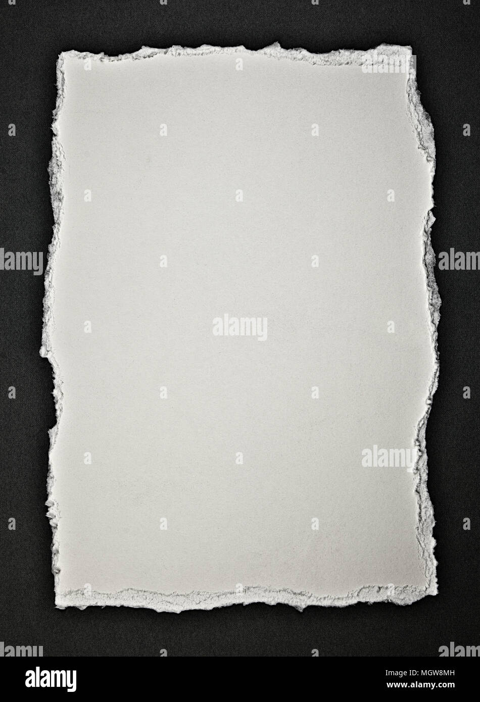Torn paper. - Stock Image