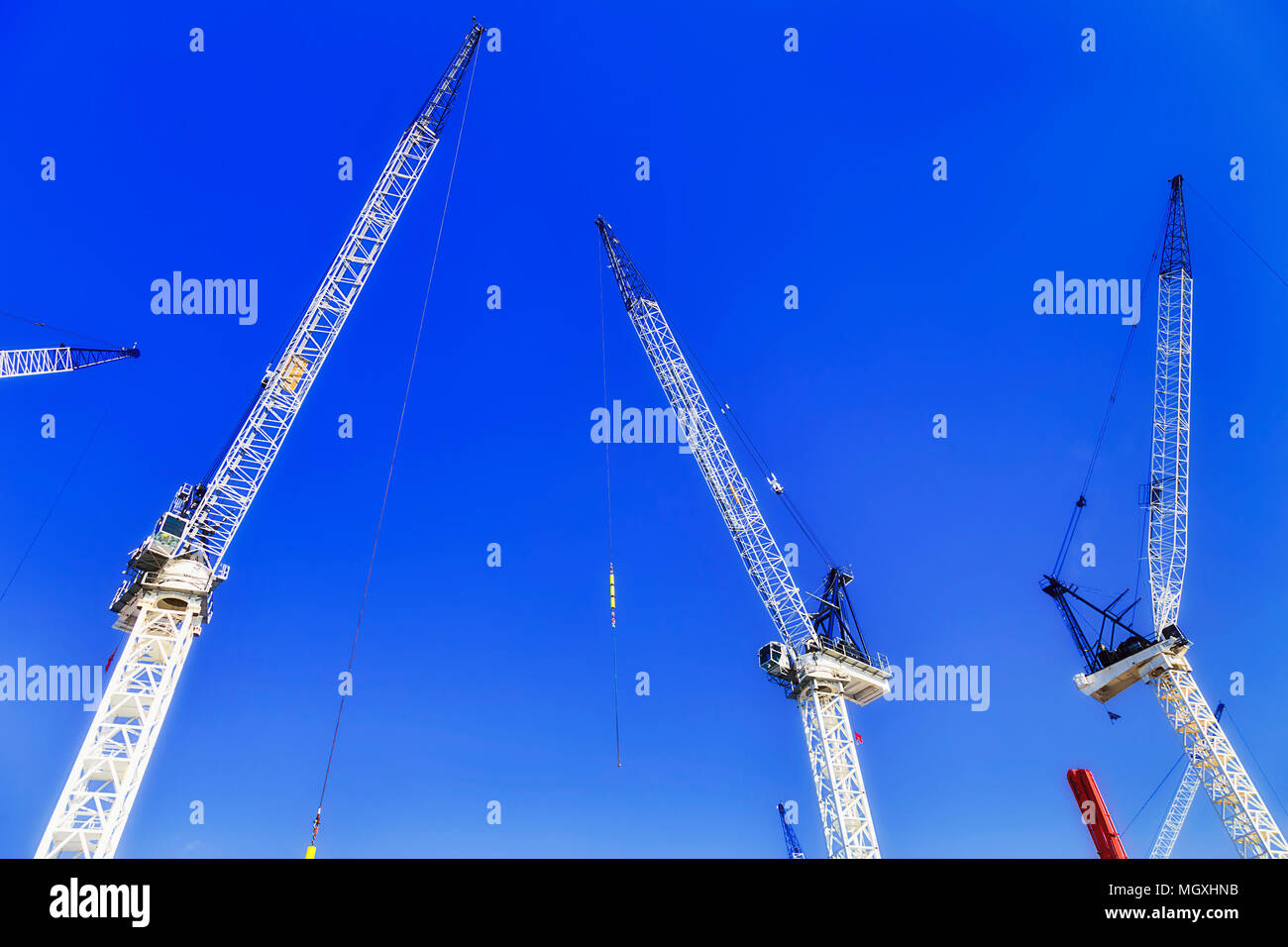 Traditional construction economy with many construction cranes at building site in Australia against clear blue sky in growing strong market condition Stock Photo