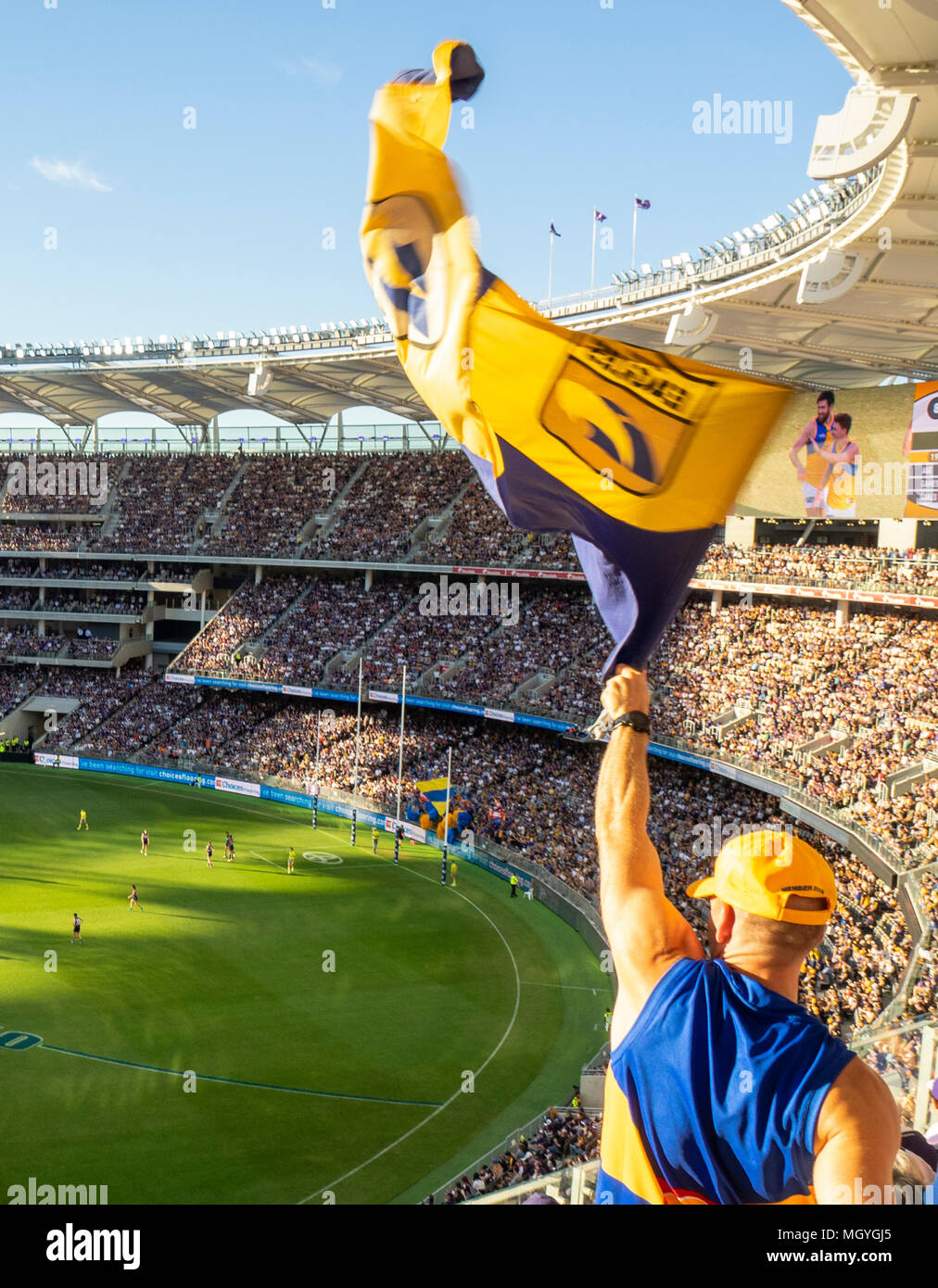 A West Coast Eagles fan waves the club flag after the team scores a goal in the Western derby at Optus Stadium, Perth, WA, Australia. Stock Photo