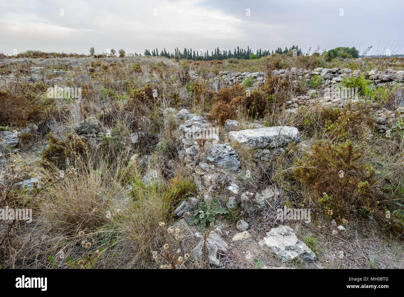 Ruins of the Royal Palace of Ugarit, the royal residence of the rulers of the ancient kingdom of Ugarit on the Mediterranean coast of Syria. - Stock Image