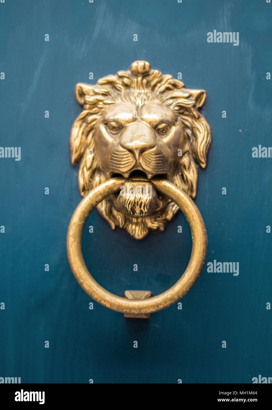 antique door knob lion head - Stock Image