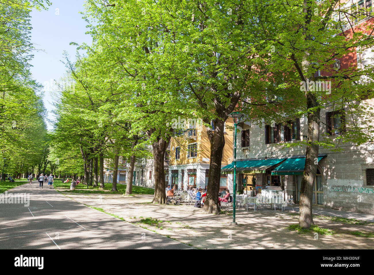 Spring in Venice. Fresh green trees in the Parco della Rimembranze along Viale 1V Novembre, Sant'Elena, Venice, Veneto, Italy, Open air retsaurant - Stock Image