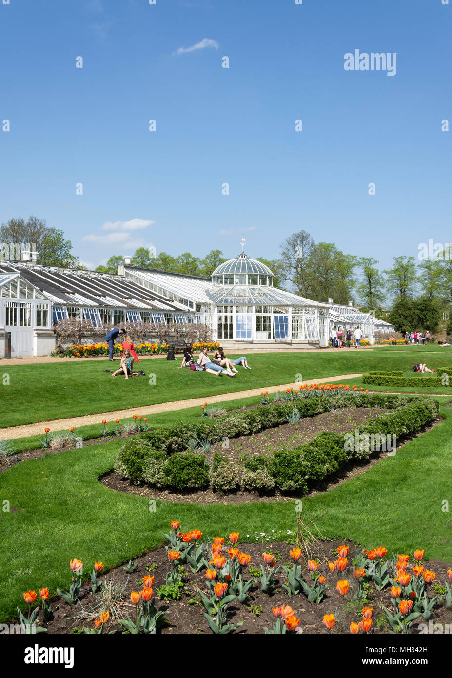 The Conservatory ‌in Chiswick House gardens, Burlington Lane, Chiswick, London Borough of Hounslow, Greater London, England, United Kingdom - Stock Image