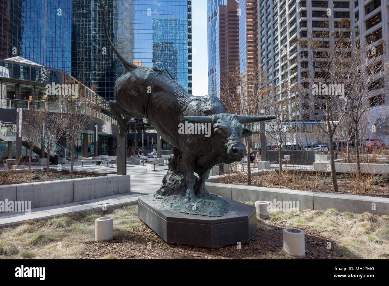 Outlaw, sculpted in bronze by artist RIchard Loffler, Fifth Avenue Place, Calgary, Alberta. Canada's most famous bull Outlaw, a red and white speckled - Stock Image