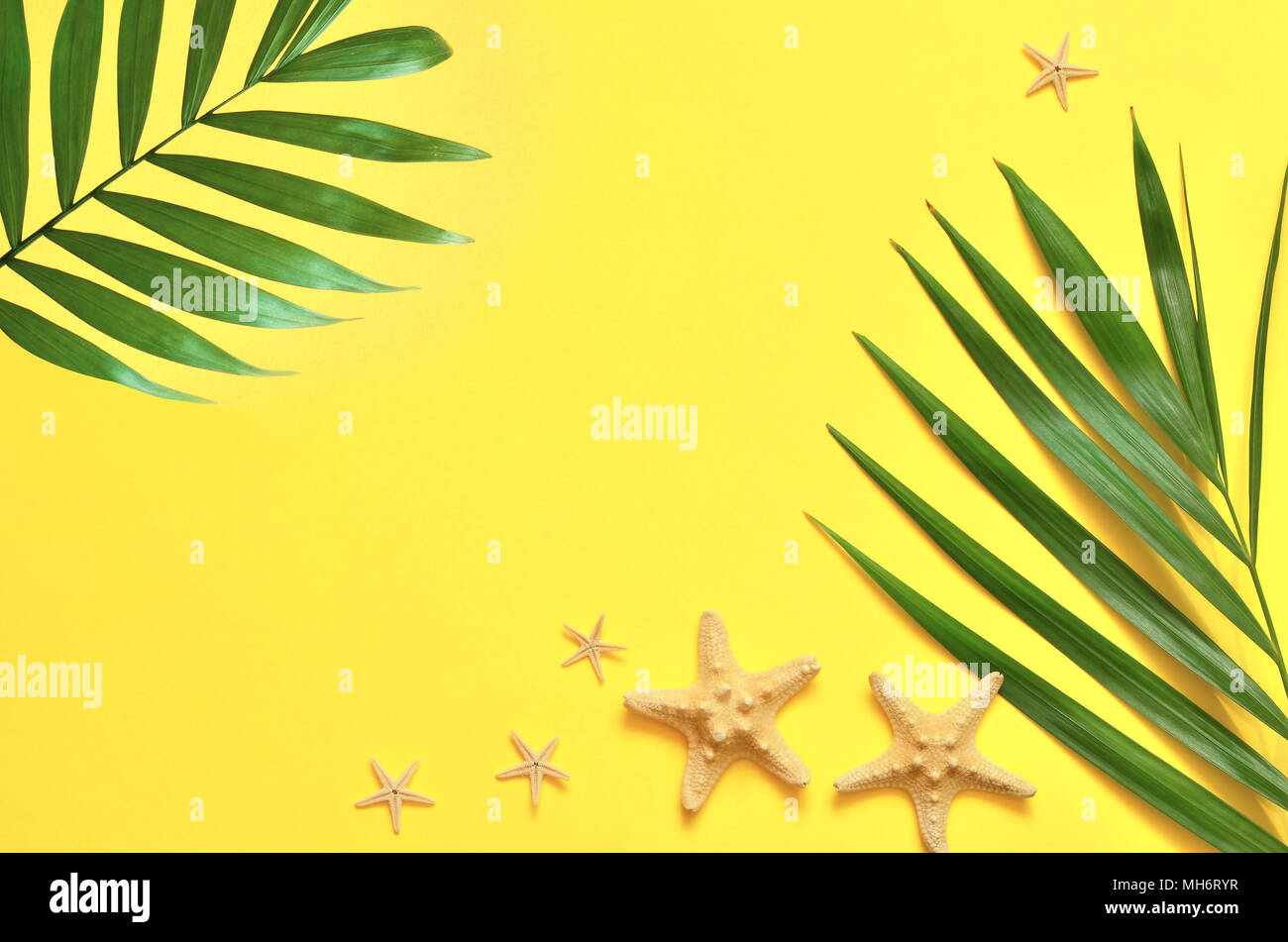 Tropical Background. Palm Trees Branches with starfish on yellow background. Travel. Copy space. Stock Photo