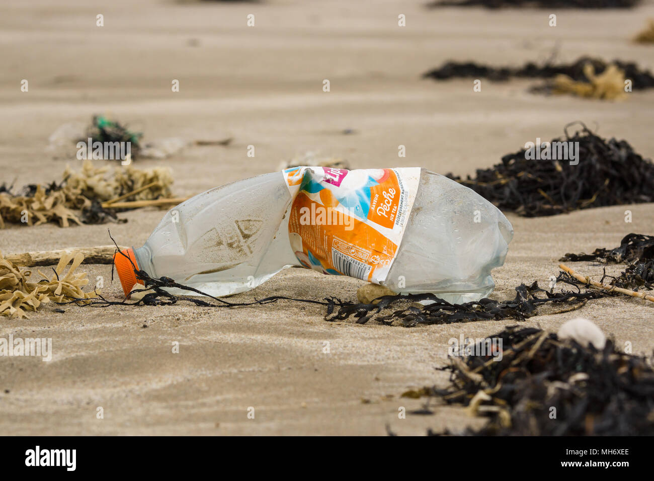 A French plastic drink bottle washed up on Harlech beach in West Wales UK an example of the many pieces of plastic in the sea around Britain - Stock Image