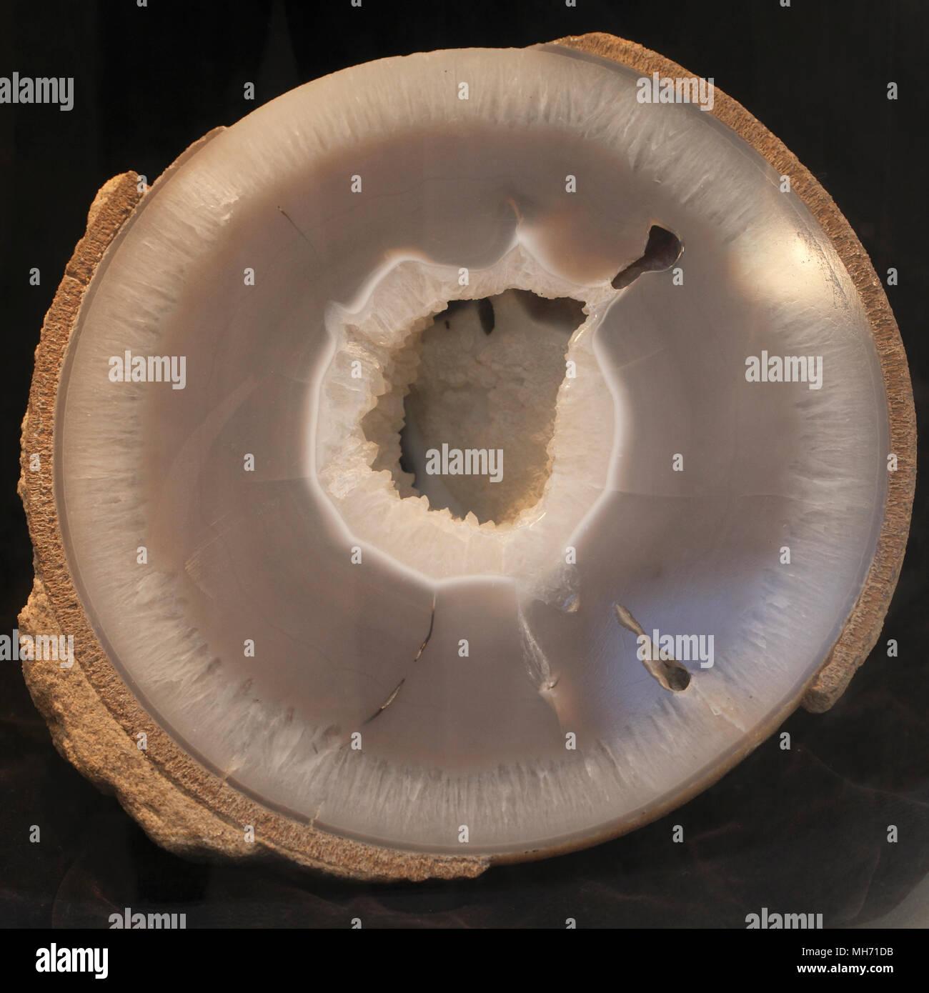 Dinosaur egg. halved. - Stock Image