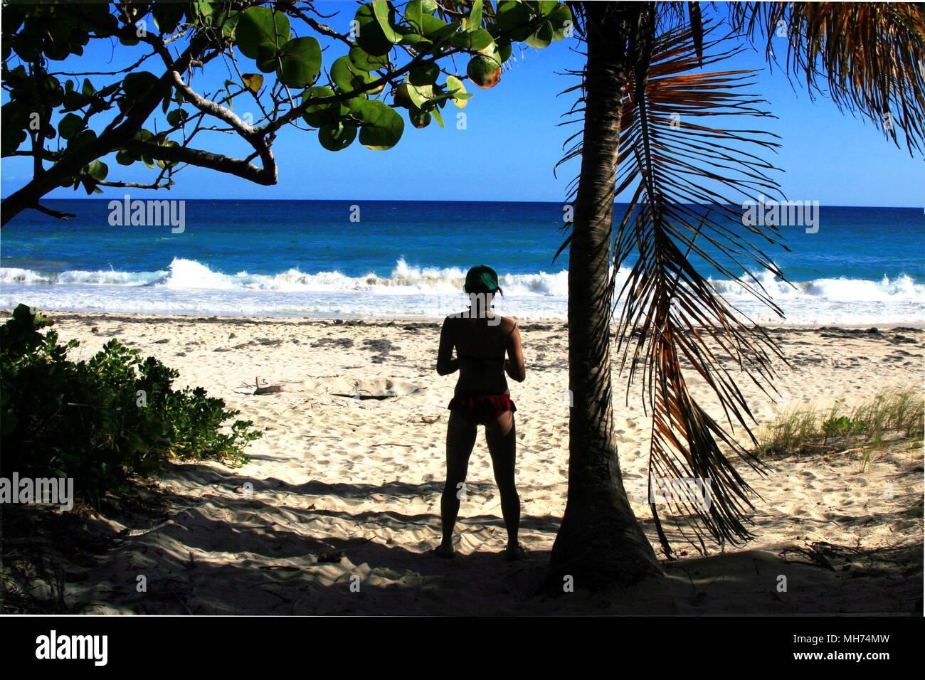 Navio Beach Vieques Puerto Rico Stock Photo
